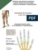 ANATOMIA DE LA MANO DORSAL