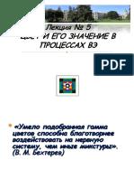 Lek_Psi_kiber_4