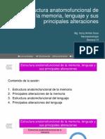 Clase 11. Estructura Anatomofuncional de La Memoria, Lenguaje y Sus