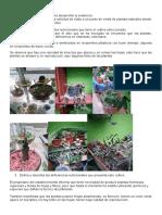 Elaborar plan de fertilización agroecológica