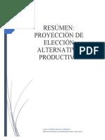 resumen-proyeccion-de-eleccion-alternativa-productiva