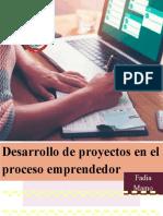 desarrollo de proyectos en el proceso emprendedor