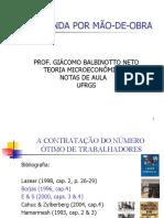 Demanda Por Mão-De-obra - Micro II (1)