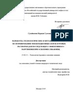 Dissertation Suleimenov NS (2)