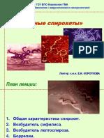 патогенные спирохеты