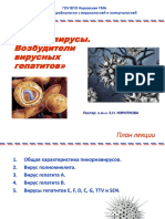 энтеровирусы, гепатиты