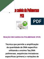 MÉTODOS BIOLOGIA MOLECULAR - AULA 01 PCR