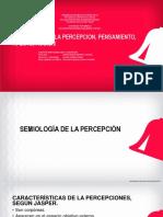 2. SEMIOLOGIA DE LA PERCEPCION, PENSAMIENTO, AFECTO
