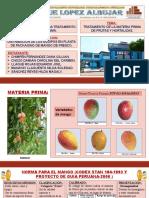 Distribución de Los Equipos en Planta de Packaging de Mango de Fresco.