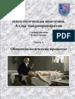 Pathomorphology Isem Ros