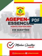 Agepen Go+Essencial+ +838+q+Comentadas 1
