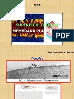 BIOLOGIA GERAL - Membrana Plasmática 12