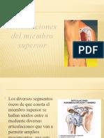 ARTICULACIONES Y PARED TORACICA
