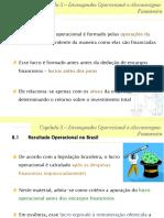 Cap 08 - Desempenho Organizacional e Alavancagem Financeira