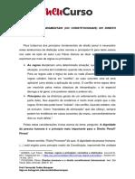 Princípios de Direito Penal-02