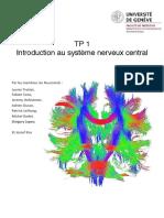 Introduction_au_systeme_nerveux_central_-_TP_1_2017 (1)
