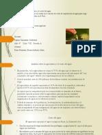 Practica de PPA (1)
