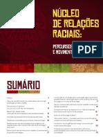 CRP RS relações raciais