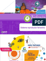PPT Clase 12 Sistema reproductor femenino