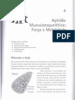 Aptidão Músculoesquelética - Força e Mobilidade