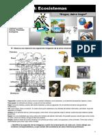 B1 TP1 Ecosistemas.pdf