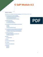 Grand Livre - Chapitre Analyse Stratégique
