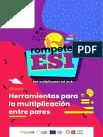201216 Esi Publicacion Compressed 1 34