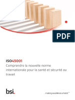 Iso 45001 Guide Final