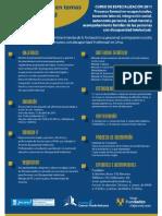 Curso de Especialización 2011 - Proyecto Fortalecimiento de la Formación ocupacional, la integración social y la inserción laboral de las personas con discapacidad intelectual en Lima.