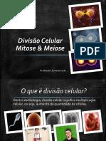 Aula 1 - Mitose & Meiose