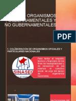 Diapositiva-11-Organismos-gubernamentales-y-no-gubernamentales.
