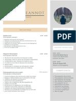 CV Moderne Blanc Et Vert d'Eau (2)
