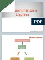 Revisão Compartimentos e Líquidos - pdf