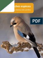 Guide des oiseaux de jardins