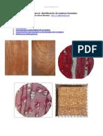 manual-identificacion-maderas-forestales