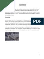 Rocas Volcanicas - Aglomerado