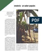 Agroforester+¡a, articulo