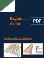 axila-121022023837-phpapp02