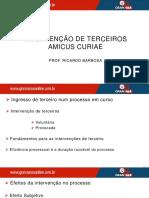 16 Intervenção de Terceiros Amicus Curi