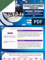 NORMA TÉCNICA RVM_273_ PPT_2021