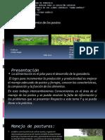 Presentacion 2 Con Diapositiva