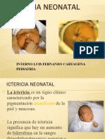 Icteria Neonatal 2030