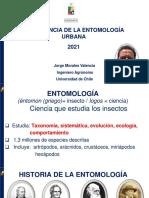 INTRODUCCION_A_LA_ENTOMOLOGIA_URBANA_2021_JMORALES_ (1)