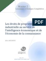 Les DPI au service de l'IE et de l'économie de la connaissance
