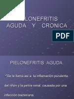 PIELONEFRITIS AGUDA    Y    CRONICA_1