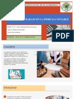 PAPELES DE TRABAJO EN LA PERICIA CONTABLE- expo grupo 13
