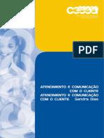 Manual Atendimento_completo (1) (2)