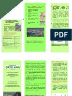 TRIPTICO RECICLAJE DE BOLSAS PLASTICAS (1)