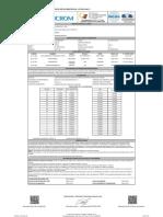 EL.PT.781 CALIBRACION-2021-03-08