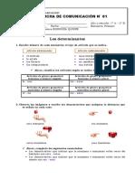 S1 2 COM 2 VIR PD Resuelto Los Determinantes